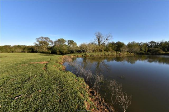 (+/-158 acres) County Road 334, Caldwell, TX 77836 (MLS #19004690) :: The Shellenberger Team