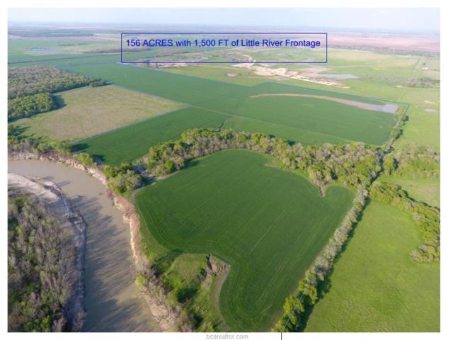 0 Fm 485 Farm To Market Road, Cameron, TX 76520 (MLS #19006020) :: Treehouse Real Estate