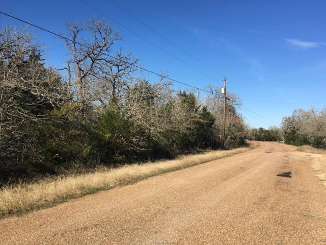 1910 Big Berry Road, Somerville, TX 77879 (MLS #19006096) :: The Lester Group