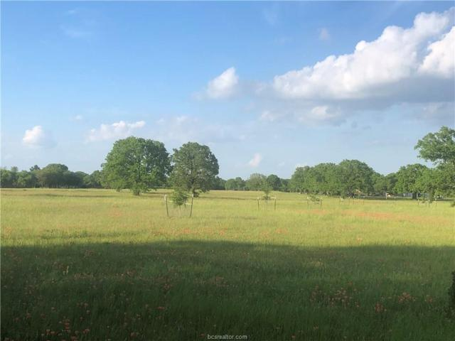 10479 Steep Hollow Road, Bryan, TX 77808 (MLS #19006358) :: Treehouse Real Estate
