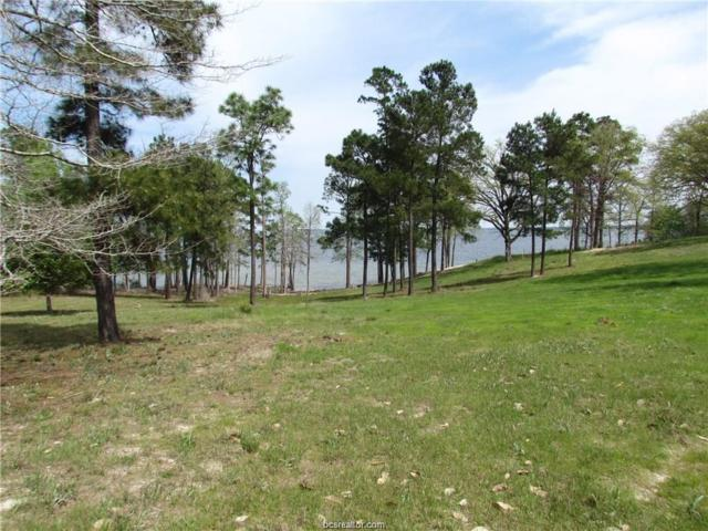 1888 Prt Of Private Road 6065, Other, TX 75951 (MLS #19006376) :: The Lester Group