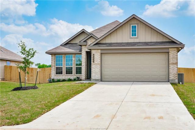 827 Mockingbird Street, Navasota, TX 77868 (MLS #19006649) :: BCS Dream Homes
