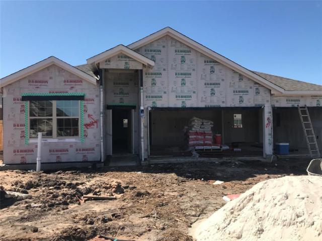 7419 Saint Andrews Lane, Navasota, TX 77868 (MLS #19006849) :: BCS Dream Homes