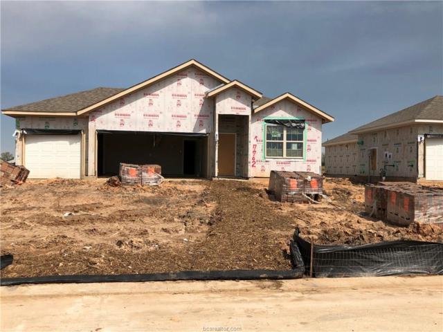 7702 Bogie Lane, Navasota, TX 77868 (MLS #19006850) :: BCS Dream Homes
