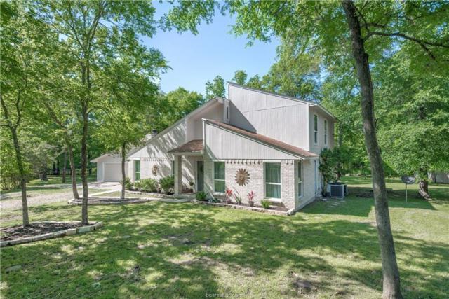48 Raven Drive, Bryan, TX 77808 (MLS #19006980) :: Treehouse Real Estate