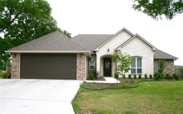 104 Spanish Oak Trail, Cameron, TX 76520 (MLS #19007057) :: Chapman Properties Group
