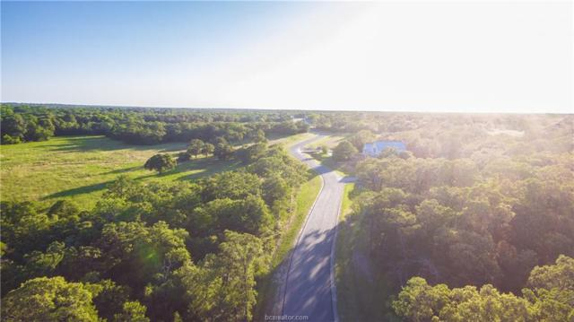 1.655 acres Millican Meadows Circle, College Station, TX 77845 (MLS #19007065) :: Treehouse Real Estate