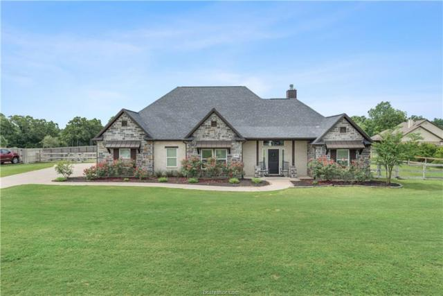 5271 Prairie Dawn Trail, College Station, TX 77845 (MLS #19007156) :: The Shellenberger Team