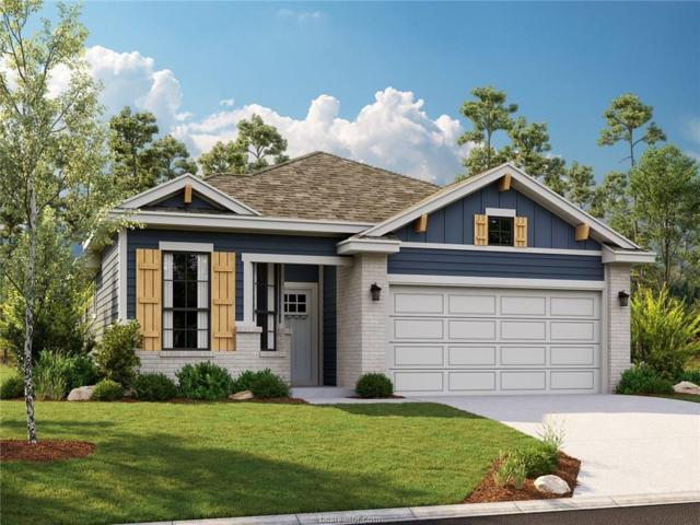 2154 Mountain Wind Loop, Bryan, TX 77807 (MLS #19007223) :: Treehouse Real Estate
