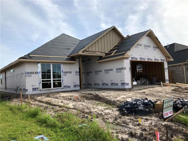 4008 Oak Meadow Grove Circle, College Station, TX 77845 (MLS #19007374) :: Chapman Properties Group