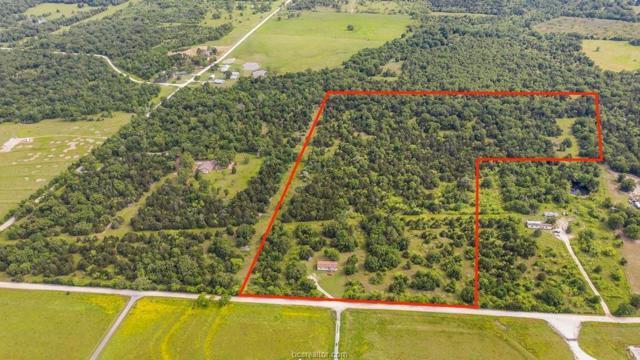 10191 Olsen Road, North Zulch, TX 77872 (MLS #19007400) :: Treehouse Real Estate