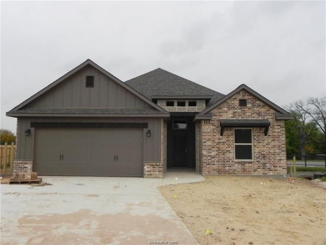 2702 Colony Vista Court, Bryan, TX 77808 (MLS #19007424) :: Treehouse Real Estate