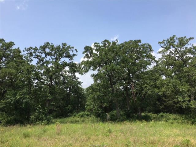 Lot 220-R Hampton Court, Iola, TX 77861 (MLS #19007650) :: BCS Dream Homes