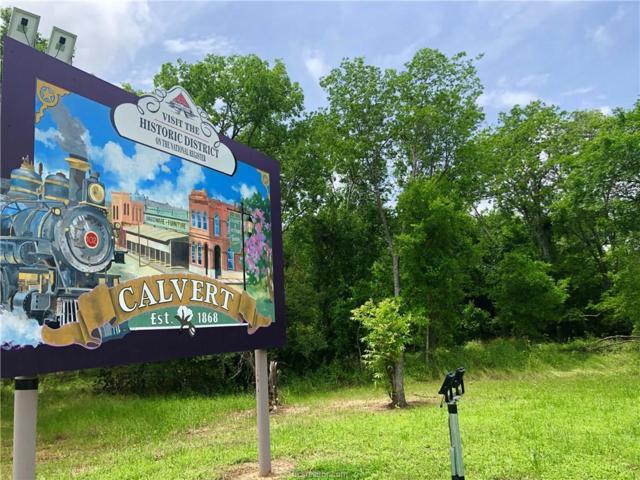 (+/-18 ac) TBD State Hwy 6, Calvert, TX 77837 (MLS #19007724) :: Treehouse Real Estate