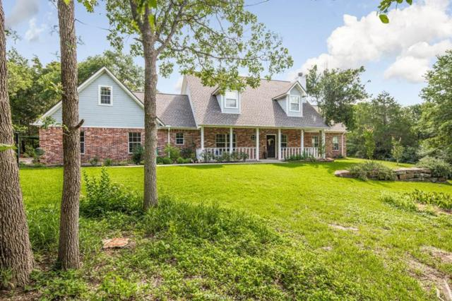 12313 Hopes Creek Road, College Station, TX 77845 (MLS #19007786) :: Treehouse Real Estate