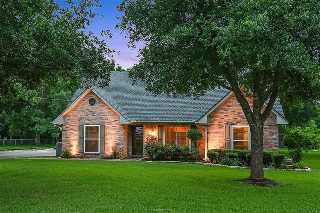 2007 Pinewood Drive, Bryan, TX 77807 (MLS #19007797) :: RE/MAX 20/20