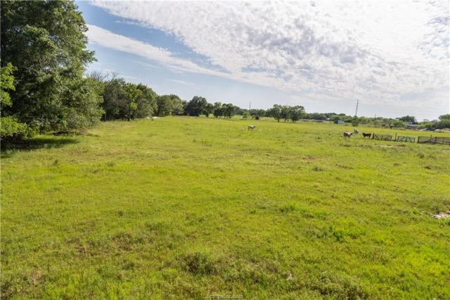 3017 Sandy Point Road, Bryan, TX 77807 (MLS #19007821) :: NextHome Realty Solutions BCS