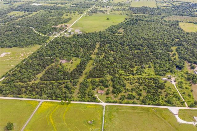 000 Lone Star Rd, North Zulch, TX 77872 (MLS #19007954) :: The Shellenberger Team