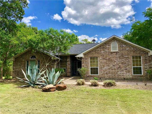 9706 Woodview Drive, College Station, TX 77845 (MLS #19007970) :: Treehouse Real Estate