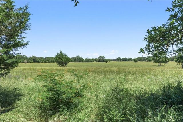4599 Oakwood Estates Lane, Bryan, TX 77808 (MLS #19007991) :: Cherry Ruffino Team