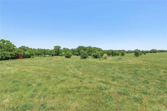 4555 Oakwood Estates Lane, Bryan, TX 77808 (MLS #19008179) :: Treehouse Real Estate