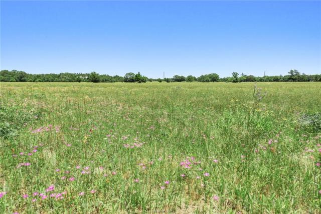 4533 Oakwood Estates Lane, Bryan, TX 77808 (MLS #19008180) :: Cherry Ruffino Team