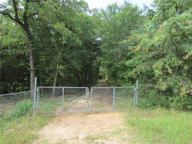 233 Lcr 777, Lake Limestone, TX 76642 (MLS #19009362) :: Treehouse Real Estate