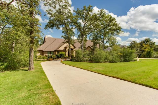 18299 Cantle Court, College Station, TX 77845 (MLS #19009363) :: The Shellenberger Team