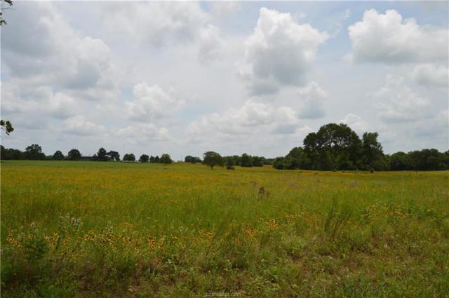+/-2.568 Ac. Red Bank Road, Bremond, TX 76629 (MLS #19009600) :: Treehouse Real Estate
