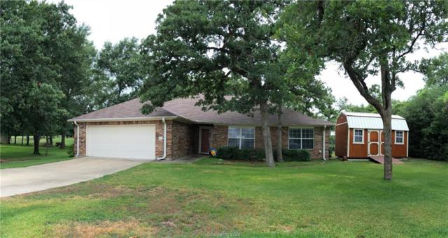 113 Fairway, Hilltop Lakes, TX 77871 (MLS #19009895) :: Treehouse Real Estate