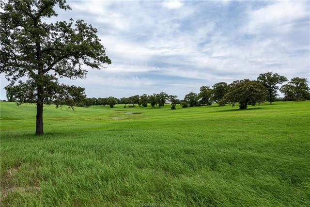 6082 County Road 308 (145 Acres), Caldwell, TX 77836 (MLS #19009909) :: RE/MAX 20/20