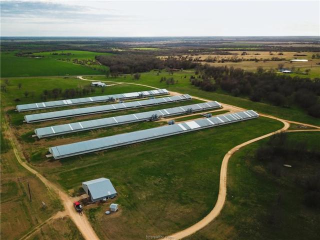 8398 Fm 487, Rockdale, TX 76567 (MLS #19009951) :: Treehouse Real Estate