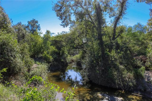 TBD County Rd 224, Anderson, TX 77830 (MLS #19010000) :: Treehouse Real Estate