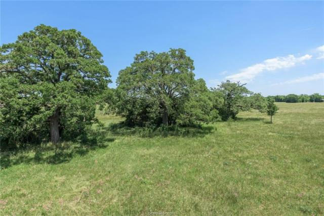 4511 Oakwood Estates Lane, Bryan, TX 77808 (MLS #19010151) :: Treehouse Real Estate