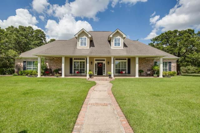 9505 Twelve Oaks, College Station, TX 77845 (MLS #19010157) :: Cherry Ruffino Team