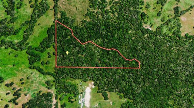 TBD Connor Lane, Madisonville, TX 77864 (MLS #19010194) :: Treehouse Real Estate