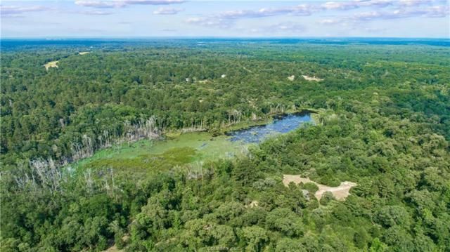 TBD Cr 147 County Road, Centerville, TX 75833 (MLS #19010195) :: Treehouse Real Estate