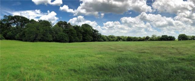 8800 Fm 1940 Farm To Market Road, Franklin, TX 77856 (MLS #19010213) :: Treehouse Real Estate