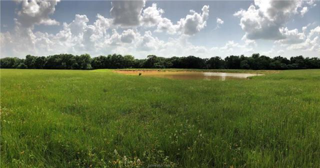 11591 S. Hickory Loop, Calvert, TX 77837 (MLS #19010216) :: Treehouse Real Estate