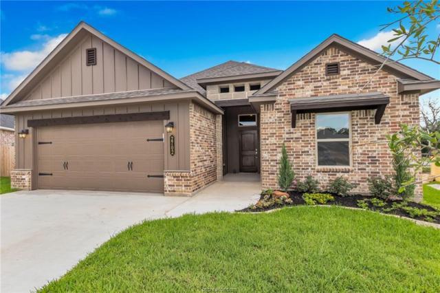 2702 Colony Vista Court, Bryan, TX 77808 (MLS #19010234) :: Chapman Properties Group
