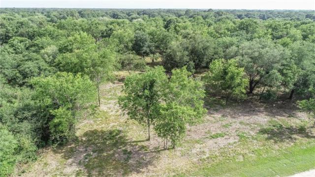 134 Pin Oak Lane, Hempstead, TX 77445 (MLS #19010339) :: Treehouse Real Estate