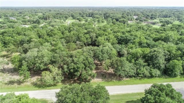 132 Pin Oak Lane, Hempstead, TX 77445 (MLS #19010340) :: Treehouse Real Estate
