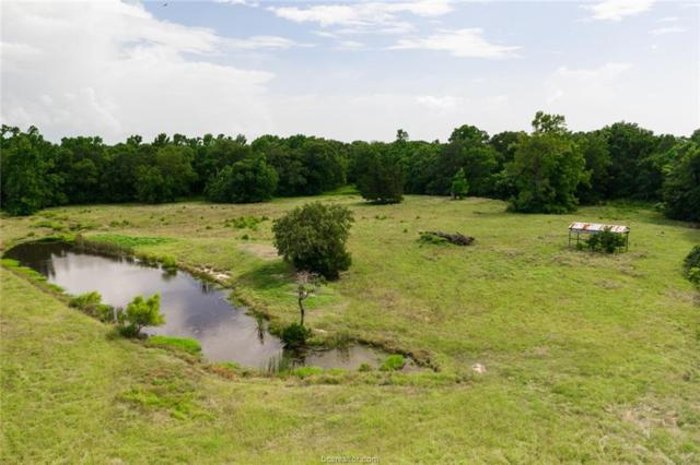 TBD Pearson Road, Midway, TX 75852 (MLS #19010377) :: Treehouse Real Estate