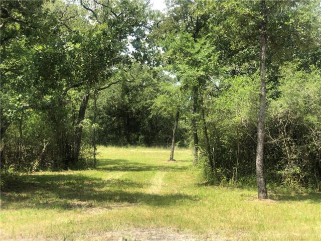 1400 E Yaupon Drive, Snook, TX 77878 (MLS #19010412) :: Treehouse Real Estate