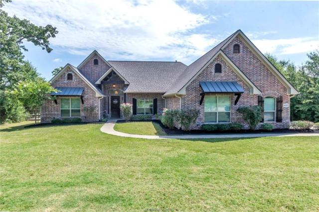 18001 Martingale Court, College Station, TX 77845 (MLS #19010430) :: Chapman Properties Group