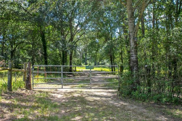10026 County Road 305, Rockdale, TX 76567 (MLS #19010434) :: Treehouse Real Estate