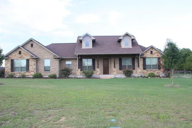 18259 Retriever Run, College Station, TX 77845 (MLS #19010460) :: Chapman Properties Group
