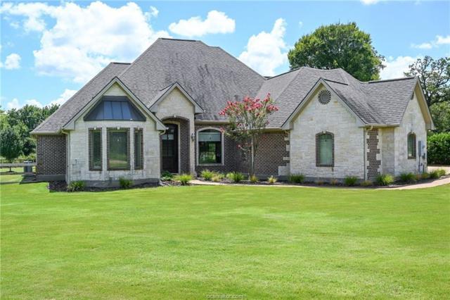 10423 Abbey, Iola, TX 77861 (MLS #19010463) :: Treehouse Real Estate