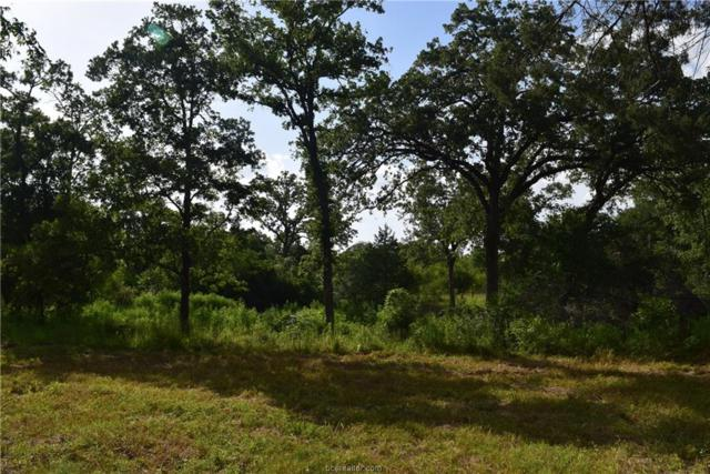 25591 Fm 39, Iola, TX 77861 (MLS #19010609) :: Treehouse Real Estate