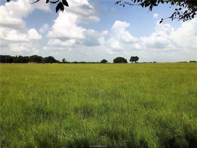 11703 S. Hickory Loop, Calvert, TX 77837 (MLS #19010722) :: Treehouse Real Estate